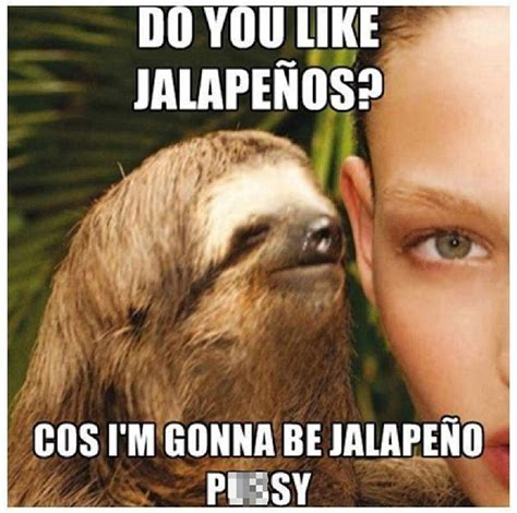 Creepy Sloth Meme - cdn themetapicture com media funny sloth whisper meme jpg memes