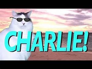 HAPPY BIRTHDAY CHARLIE! - EPIC CAT Happy Birthday Song ...  Happy