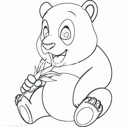 Panda Coloring Pages Bear Anime Printable Colorings