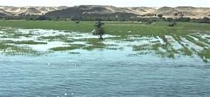Image Gallery Nile Flooding