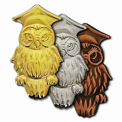 Owl Badges Wise Badge