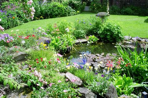 landscaping plans for wildlife friendly gardens thats my