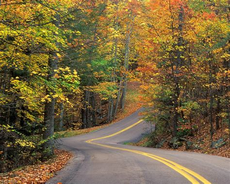 Autumn Roads Wallpapers by Wonderful Autumn Road Wallpapers