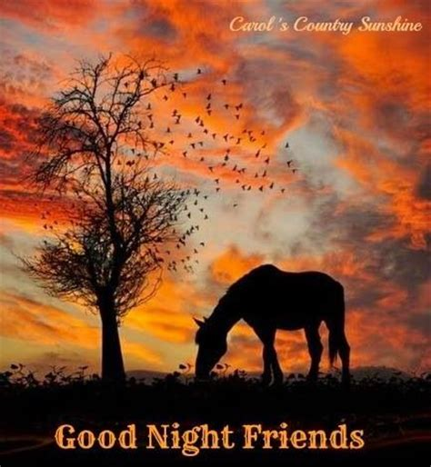 Good Night Via Carol's Country Sunshine On Facebook. God Quotes When Someone Dies. Strong Quotes With Pics. Humor Quotes About Change. Beach Quotes Inspirational. Life Quotes Victor Hugo. Instagram Quotes Hustle. Happy Quotes Morning. Disney Quotes It All Started With A Mouse