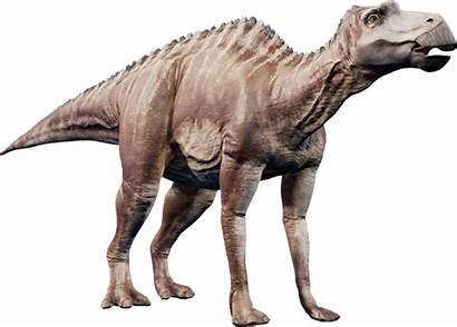 Jurassic Evolution Maiasaura Park Dinosaur Fandom Deviantart
