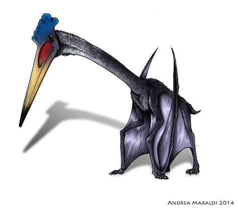 Rettili Volanti Preistorici Hatzegopteryx Il Pi 249 Grande Animale Volante Mai Esistito