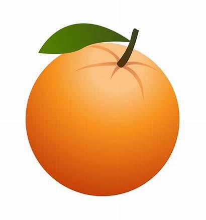 Clipart Orange2 Healthy Nutrition