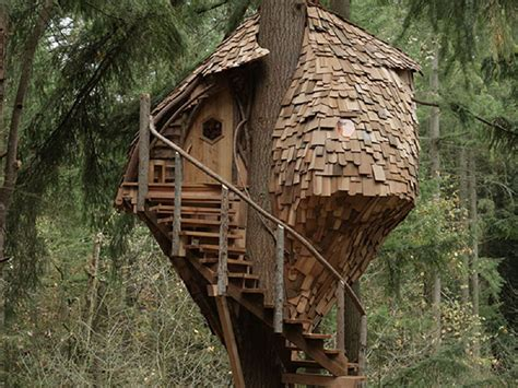 animal planets treehouse masters swings