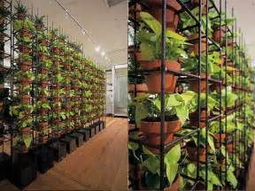 Planter Box Melbourne by Green Your Walls With Schiavello Vertical Gardens