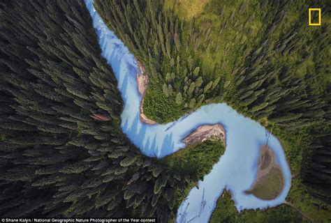National Geographic Photographer Nature of the Year