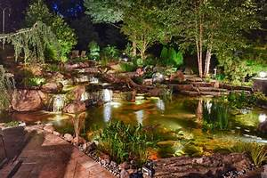 Fish Pond  Ecosystem Pond  Water Garden  In Randolph  Nj