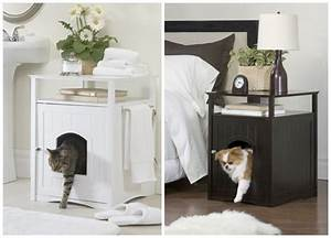 Maison Pour Chat Extérieur : diy la maison de toilette pour chat bleu electrique ~ Premium-room.com Idées de Décoration