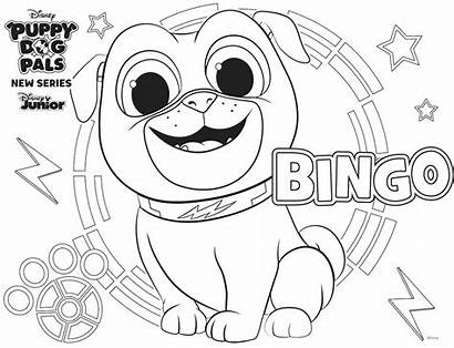 Coloring Bingo Disney Activity Dog Puppy Pals