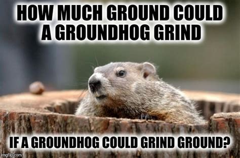 Groundhog Meme - groundhog imgflip