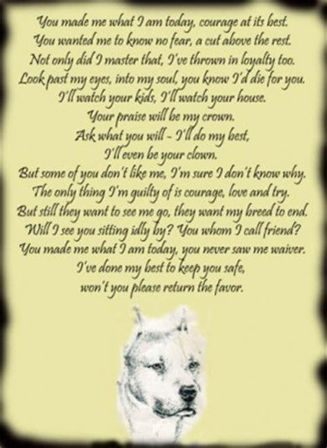 pitbull poems  quotes quotesgram