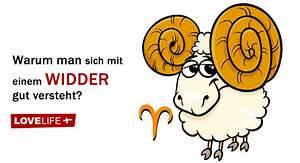 Widder Und Widder : welche sternzeichen passen gut zum widder ~ Orissabook.com Haus und Dekorationen