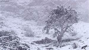Snow Storm Pictures, Photos, and Images for Facebook ...