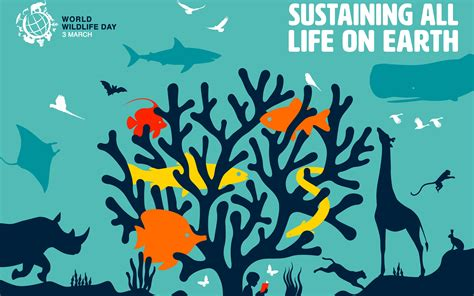 2020年世界野生动植物日-维护所有的生命【英文】_哔哩哔哩 (゜-゜)つロ 干杯~-bilibili