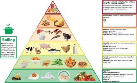phosphorus pyramid  visual tool  dietary