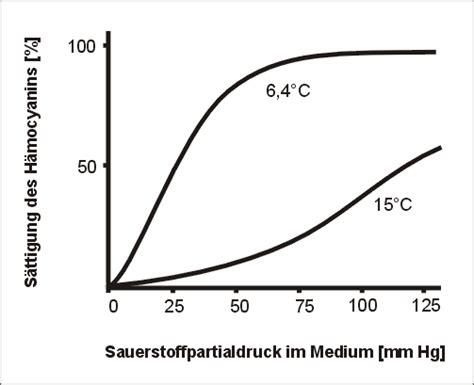 sauerstoffpartialdruck berechnen patent epb
