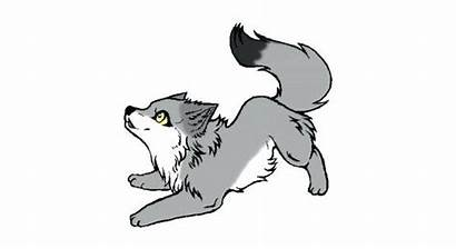 Wolf Pup Clipart Drawing Wolves Puppy Drawings