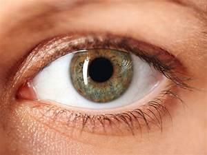 Fluorescein Eye Stain Test  U2013 Healthline