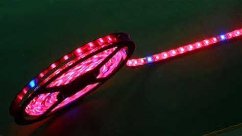 Led Strip Grow Light On Big Sale