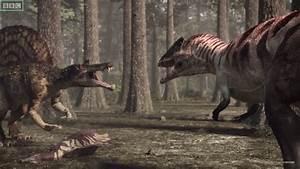 Planet Dinosaur Carcharodontosaurus | www.pixshark.com ...