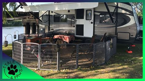 How To Safely Contain Multiple Dogs While Rv Camping