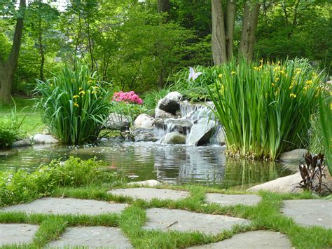 waterfalls and ponds landscaping ponds and waterfalls landscape asian with none beeyoutifullife com