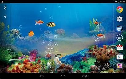 Desktop Aquarium Fish Screensaver 3d Gratis Wallpapersafari