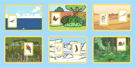 animals and their habitats matching activity animals