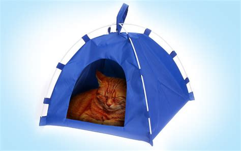 blue commercial tent hacks for cats