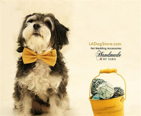 Wedding Accessories For Dogs : 561 Best Yellow Pet Wedding Accessory, Yellow Wedding