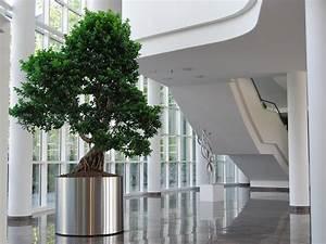 Büro Pflanzen Pflegeleicht : hydrokultur hydroflora gmbh ~ Michelbontemps.com Haus und Dekorationen