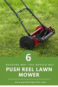 Top 10 Best Reel Mowers Reviews 2020  Push Reel Mower