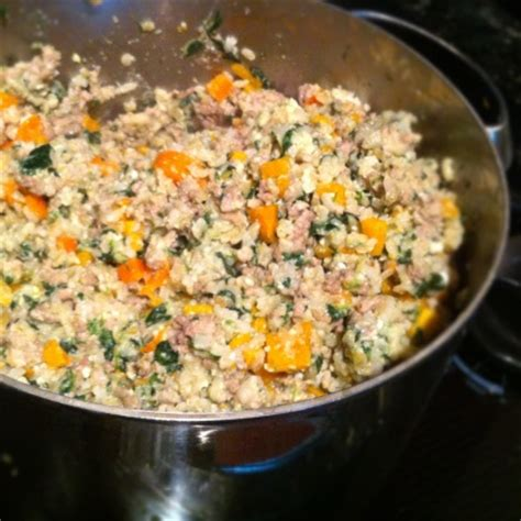 homemade dog food recipe foodcom