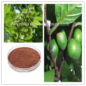 China Pygeum Africanum Bark Extract Powder, Pygeum