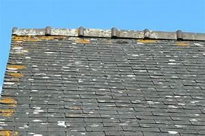 Renovation Toiture Fibro Ciment Amiante : renovation toiture ardoise fibro ciment amiante ~ Nature-et-papiers.com Idées de Décoration