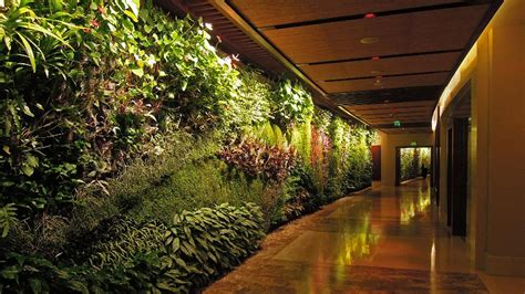 The ups and downs of vertical gardens - The National