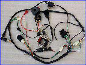 110cc Complete Electric Wire Coil For Atv Buggy Quad