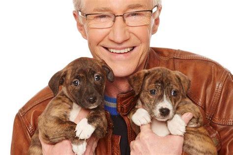 tony parsons    love  dogs tony parsons