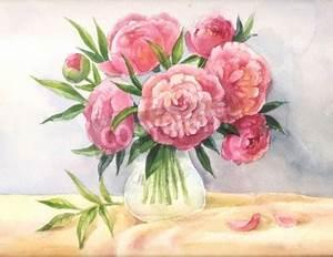 Pfingstrosen In Der Vase : pfingstrosen in einem vase aquarell skizze der rosa blumen leinwandbilder bilder ~ Buech-reservation.com Haus und Dekorationen