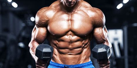 gain muscle fast  tips  men  protein