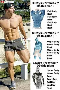 Push  Pull  Legs Split  3-6 Day Weight Training Workout Schedule And Plan