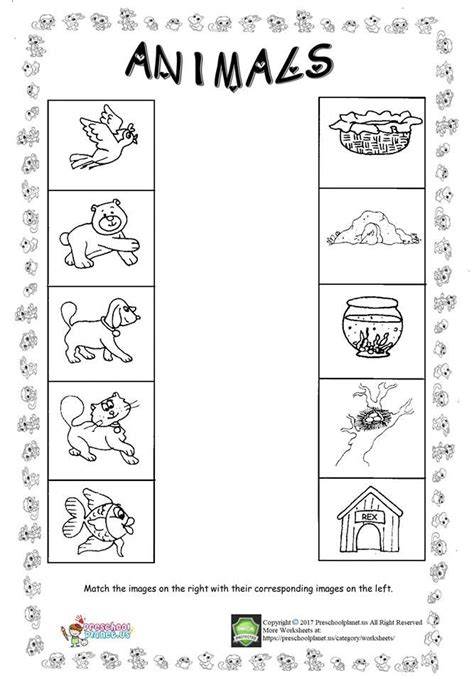 animal worksheet  kids animal worksheets worksheets