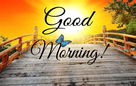 cute good morning greeting ecard  good morning ecards