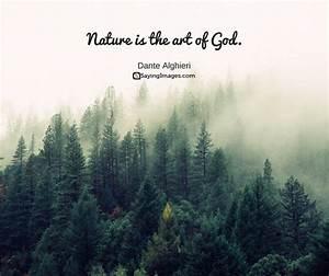 30 Beautiful Nature Quotes | SayingImages.com