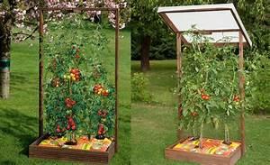 Gewächshaus Für Tomaten Selber Bauen : pflanzkasten mit rankgitter pflanzkasten g rten und hochbeet ~ Markanthonyermac.com Haus und Dekorationen