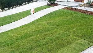 Gazon Pour L Ombre : jardin des nevelaines pour vos jardins pelouses ~ Premium-room.com Idées de Décoration